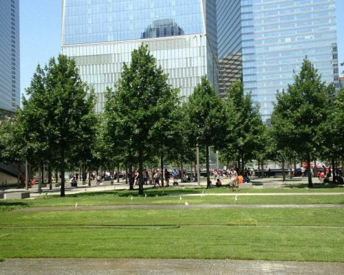 world trade center landscaping sod and lawn
