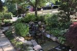 pond-maintenance-and-pruning-3