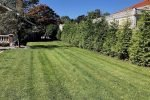Sod in Englewood Cliffs NJ