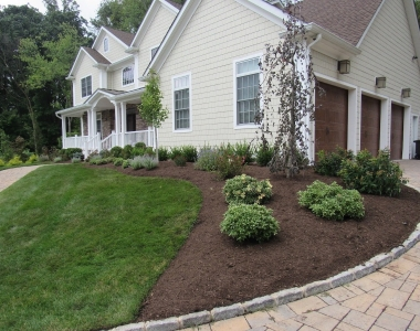 Montvale Planting Job Before and After
