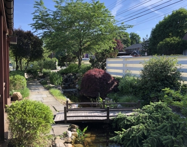 Pond Maintenance and Pruning